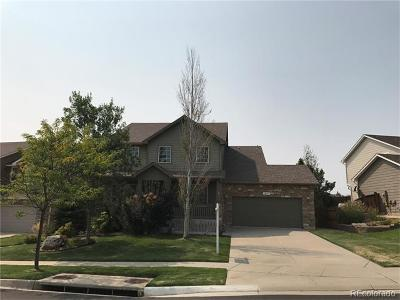 Douglas County Single Family Home Active: 12191 South Red Sky Drive