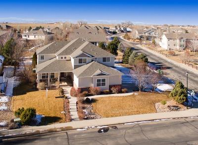 Longmont Single Family Home Active: 11733 Ashton Road