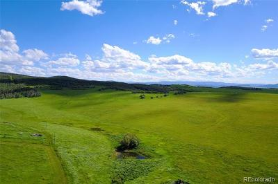 Steamboat Springs Residential Lots & Land Active: Rcr 43