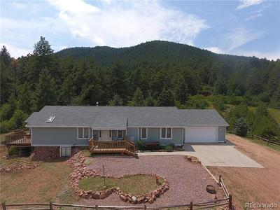 Larkspur CO Single Family Home Active: $1,099,000