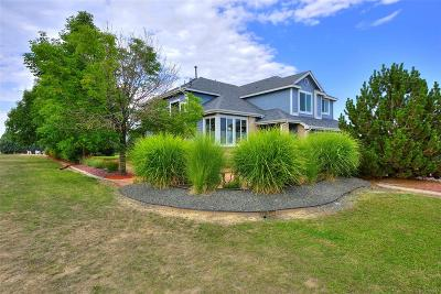 Single Family Home Active: 10105 East 149th Court