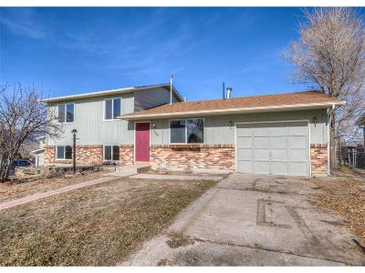 Colorado Springs Single Family Home Active: 1860 Chamberlin