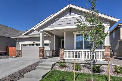 Meridian Single Family Home Under Contract: 10515 Konstanz Street