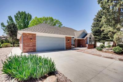 Single Family Home Active: 6076 West Warren Place