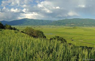 Steamboat Springs Residential Lots & Land Active: Marshall Ridge Road