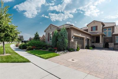 Highlands Ranch Condo/Townhouse Active: 9339 Viaggio Way