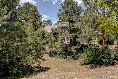 Castle Rock Single Family Home Active: 180 Ramshorn Drive