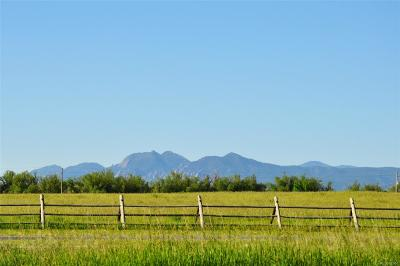 Longmont Residential Lots & Land Active: 5336 Caribou Springs Trail