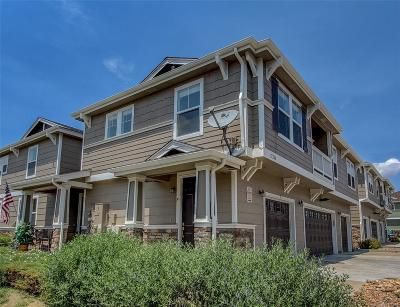 Douglas County Condo/Townhouse Under Contract: 17246 Waterhouse Circle #F