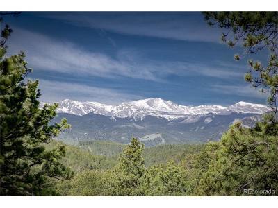 Evergreen Single Family Home Active: 31475 Upper Bear Creek Road