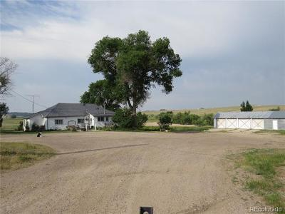 Elbert County Single Family Home Active: 29643 County Road 17/21