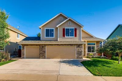 Castle Rock Single Family Home Under Contract: 4777 Sutton Street