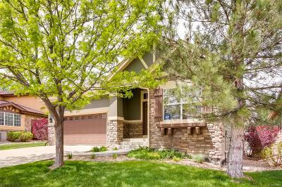 Littleton Single Family Home Under Contract: 9841 South Johnson Street