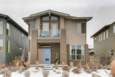 Castle Rock, Conifer, Cherry Hills Village, Greenwood Village, Englewood, Lakewood, Denver Single Family Home Active: 4969 Tamarac Street