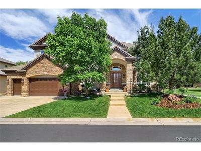 Lone Tree Single Family Home Active: 9530 South Shadow Hill Circle