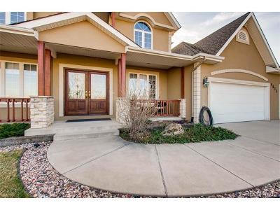 Niwot Single Family Home Active: 9072 Morton Road