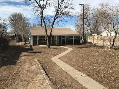 Denver Single Family Home Under Contract: 925 South Meade Street