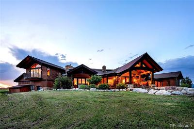 Steamboat Springs Single Family Home Active: 30355 Triple B Lane