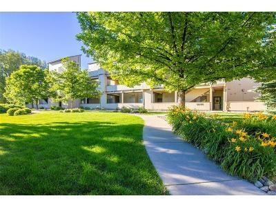 Boulder Condo/Townhouse Active: 2946 Kalmia Avenue #53