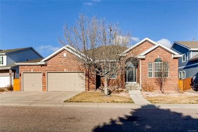 Parker Single Family Home Under Contract: 10114 Amethyst Way