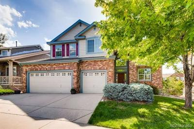 Golden Single Family Home Active: 5973 McIntyre Court