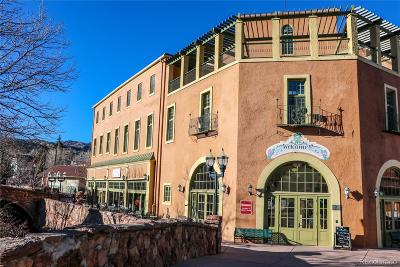 Manitou Springs Condo/Townhouse Under Contract: 934 Manitou Avenue #214