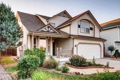 Parker Single Family Home Active: 21849 Saddlebrook Court