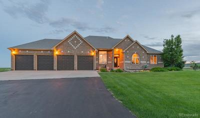 Berthoud Single Family Home Under Contract: 1156 Shelby Drive