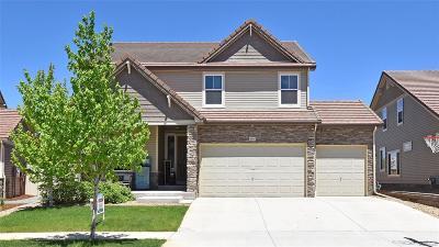 Johnstown Single Family Home Active: 4849 Saddlewood Circle