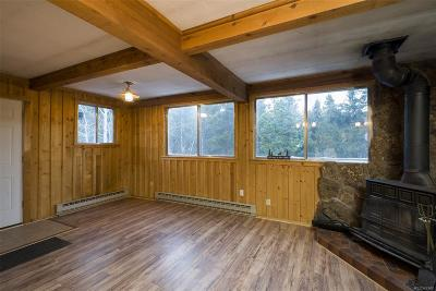 Conifer Single Family Home Under Contract: 9152 Gray Lane