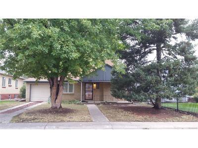 Denver Single Family Home Active: 1159 Jasmine Street