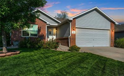 Johnstown Single Family Home Active: 244 Sandstone Drive