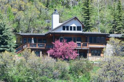 Steamboat Springs Single Family Home Active: 2930 Ridge Road