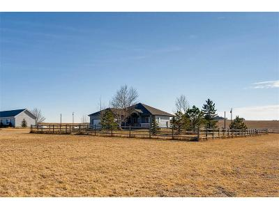 Elbert County Single Family Home Under Contract: 7668 South Shenandoah Drive