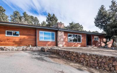 Conifer Single Family Home Under Contract: 9878 Fallen Rock Road