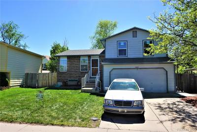 Denver Single Family Home Active: 4425 Genoa Street