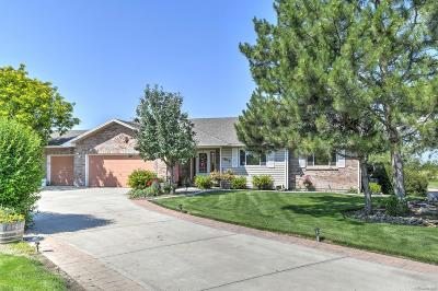 Longmont Single Family Home Active: 1872 Blue Mountain Road