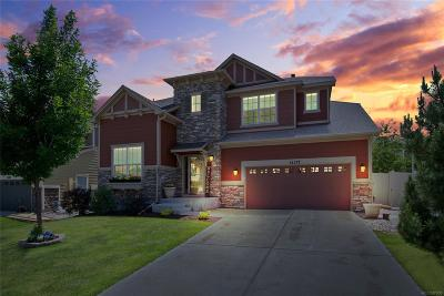 Parker CO Single Family Home Active: $530,000