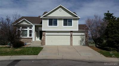 Castle Rock Single Family Home Active: 4835 Bobolink Court