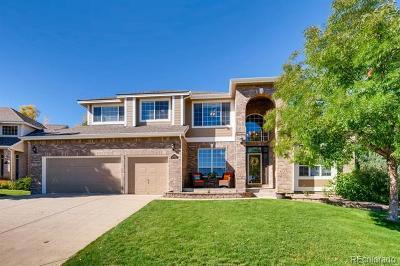 Littleton Single Family Home Active: 9092 Copeland Street