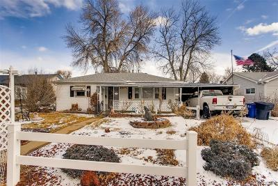 Denver Single Family Home Under Contract: 1310 South Perry Street