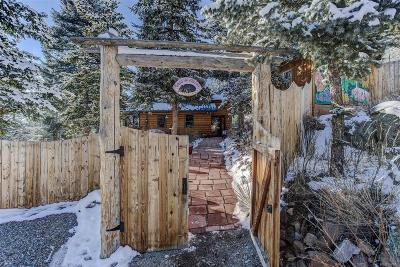 Evergreen Single Family Home Under Contract: 26259 Wild Flower Trail