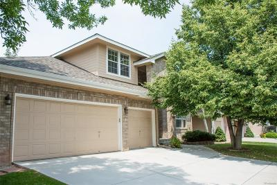 Highlands Ranch Single Family Home Active: 209 Sylvestor Place