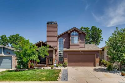 Castle Rock CO Single Family Home Active: $380,000