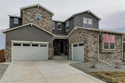 Douglas County Single Family Home Active: 10156 Atlanta Street