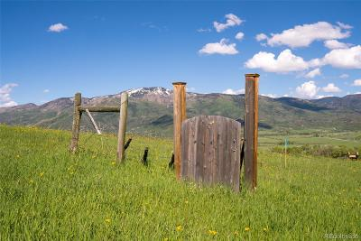 Steamboat Springs Residential Lots & Land Active: 35450 Humble Road