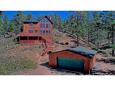 Pine CO Single Family Home Under Contract: $375,000