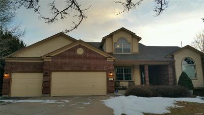 Colorado Springs Single Family Home Under Contract: 4425 Dynasty Drive