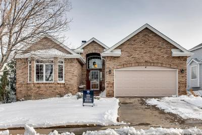 Highlands Ranch Single Family Home Active: 4 Hathaway Lane