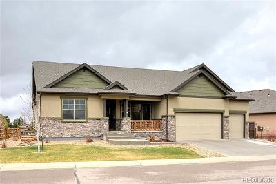 Single Family Home Active: 8160 Wynstone Drive